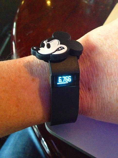 Magic Band slide on a Fitbit. Photo Credit: Gary Buchannan