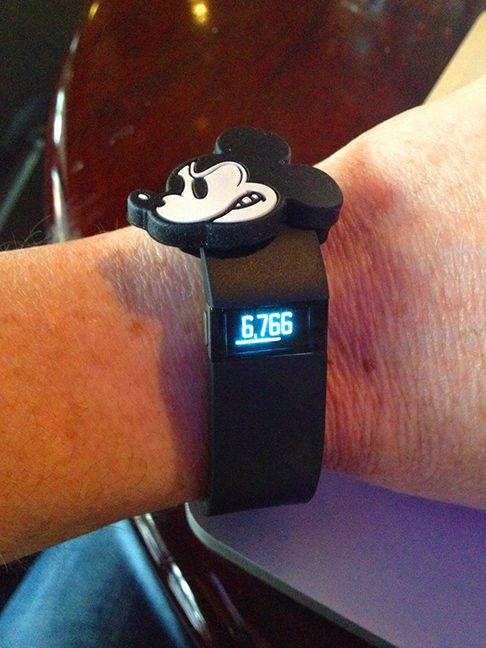 Magic Band slide on a Fitbit. Photo Credit: Gary Buchannan