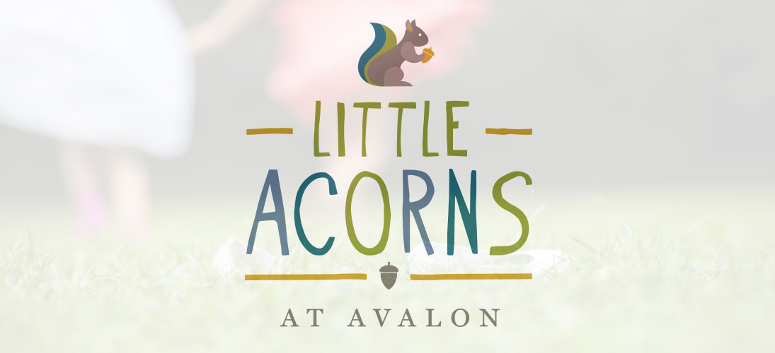 littleacorns