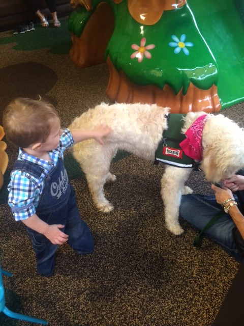 JP loved Poppy, the Canine Assistant!