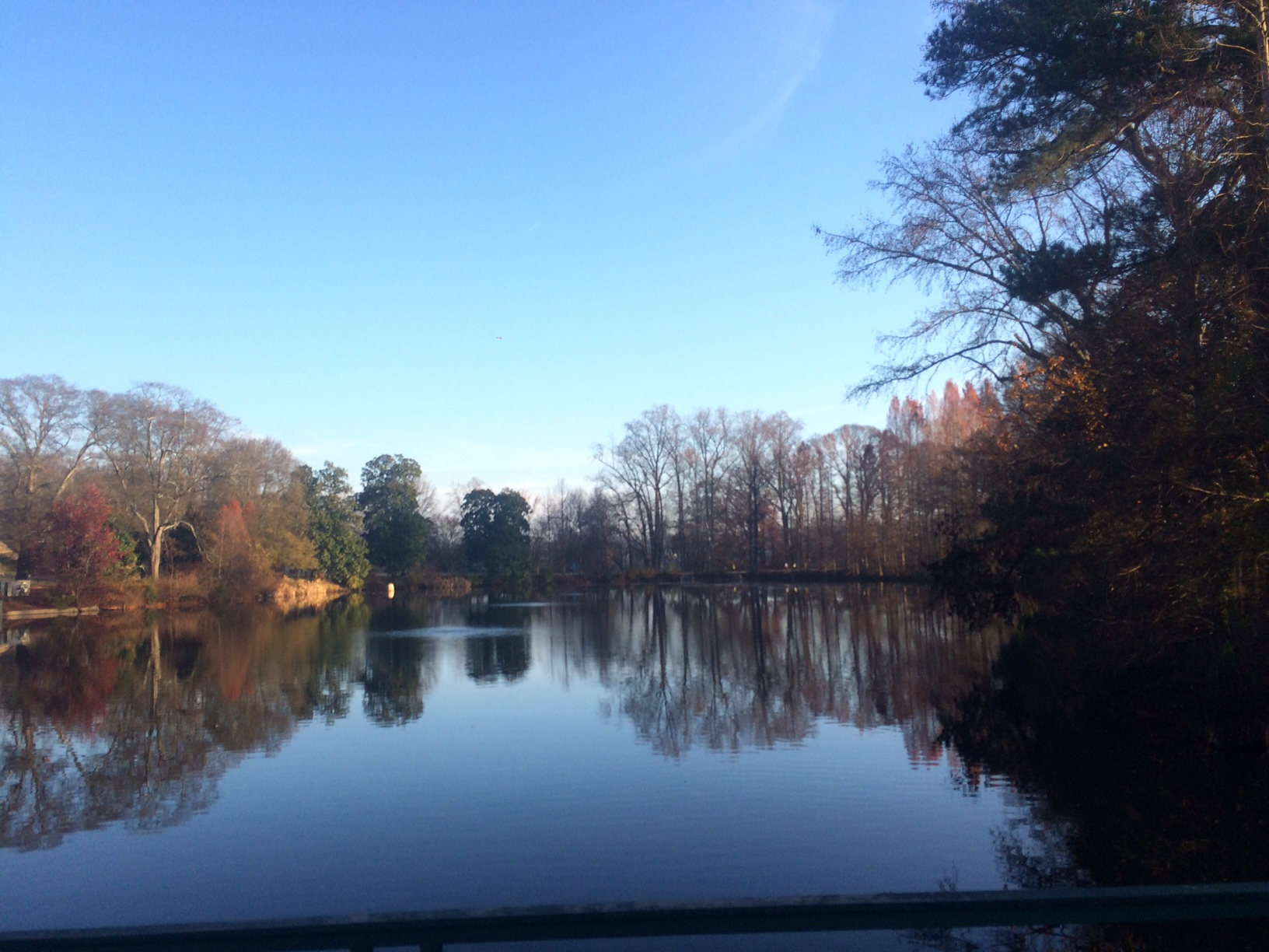 Can't beat the views in Piedmont Park.
