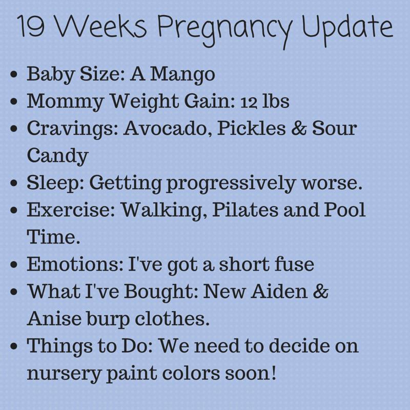 19 Weeks Pregnancy Update