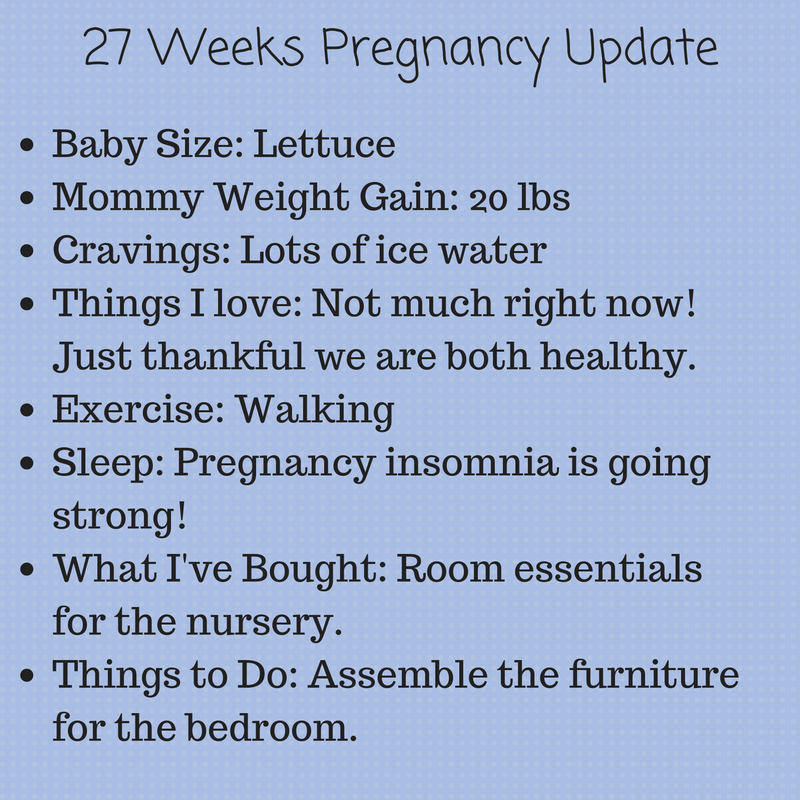 19 Weeks Pregnancy Update