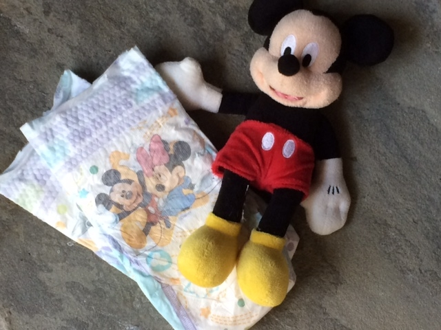 Walt Disney World Vacation with a Toddler