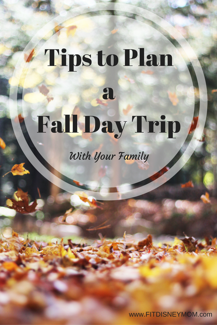 Planning a Fall Day Trip