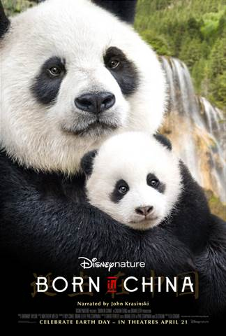 DisneyNature Born in China Review, Born in China, Pandas, Earth Day