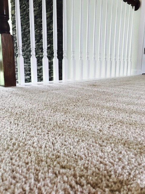 Carpet Cleaning Tips, Carpet Cleaning Atlanta, How to Clean Your Carpets,