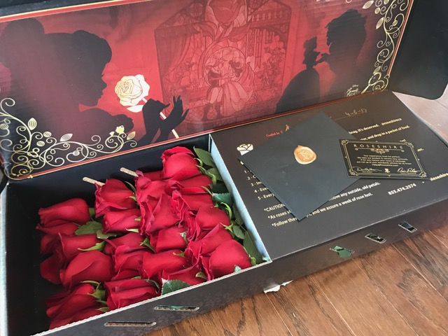 Roseshire Beauty and The Beast Roses, Roseshire Roses Review