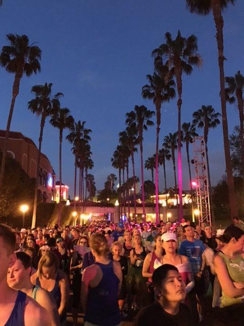 Run Disney Tinkerbell 10k, Run Disney Pixie Dust Challenge, Run Disney Tinkerbell, Disneyland Races