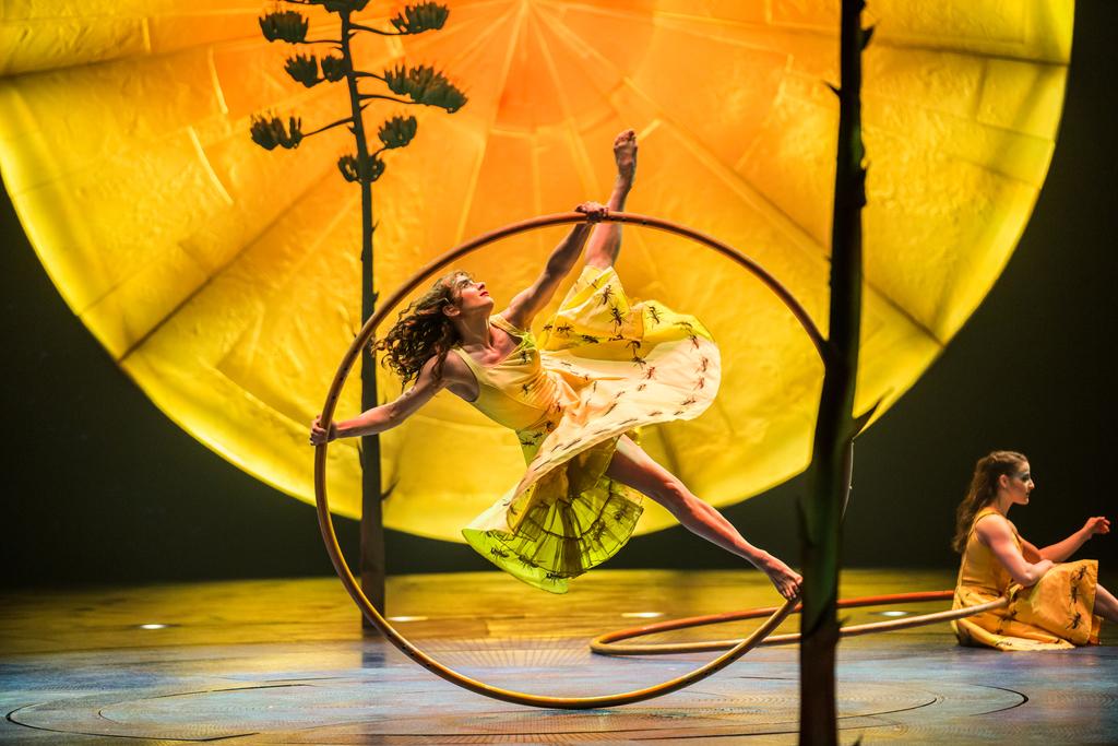 Cirque du Soliel, Luzia by Cirque du Soliel, Cirque Luzia Atlanta