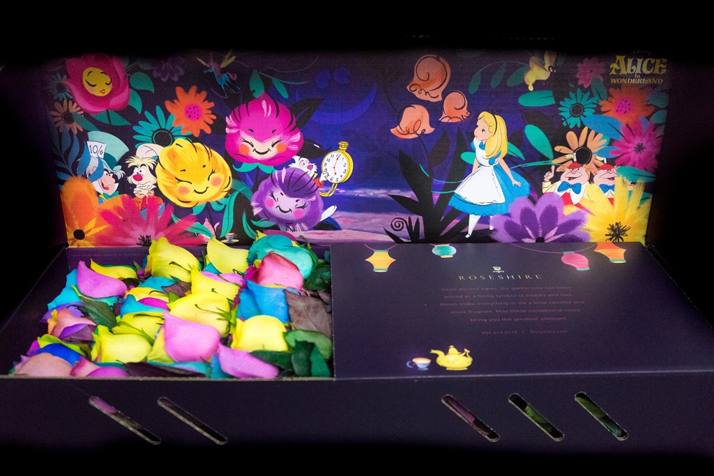 Roseshire, Disney, Roseshire x Disney, Alice in Wonderland