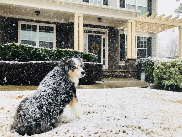 Snow Day, Snow in Atlanta, Atlanta Snow Day 2017, Winter Storms in Atlanta