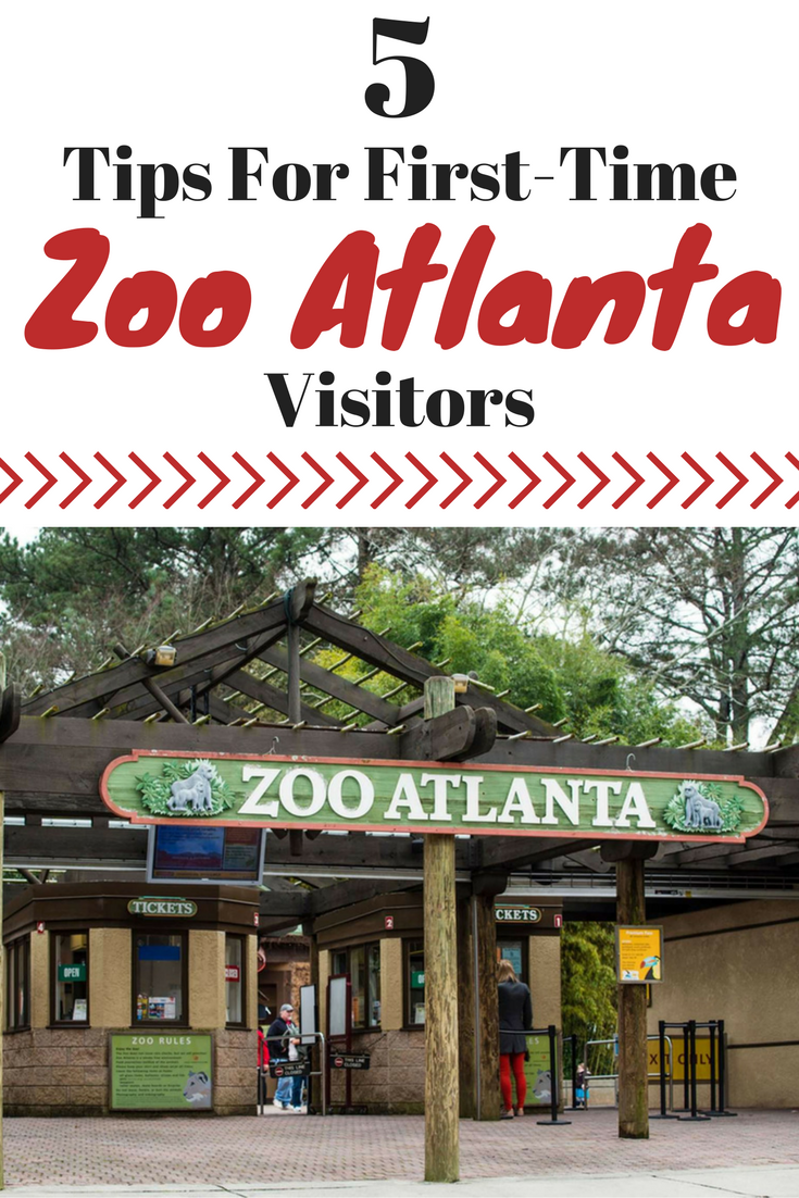 Zoo Atlanta, Atlanta Zoo, Atlanta Family Entertainment, Atlanta Kids Activities