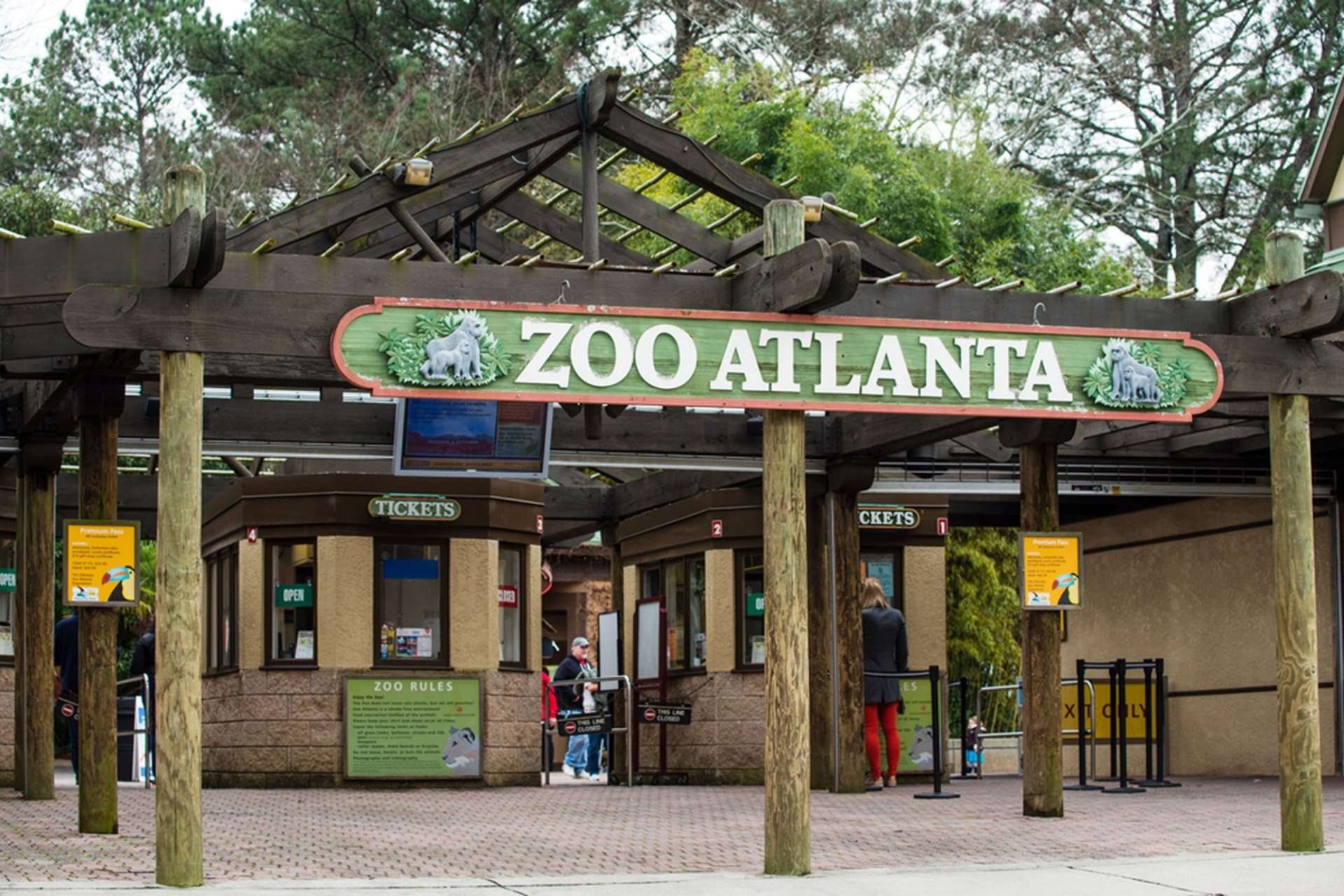 Attention, Zoo Atlanta fans: You have a few ways to check out the pandas & my favorite, the red panda, for free or on the cheap. For a limited time, you can snag discount tickets, no coupon code required.